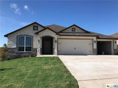 Temple TX Single Family Home For Sale: $214,900