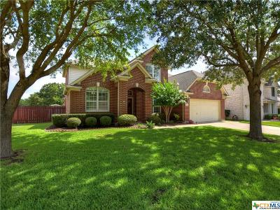 Round Rock Single Family Home For Sale: 2816 Chatelle Drive