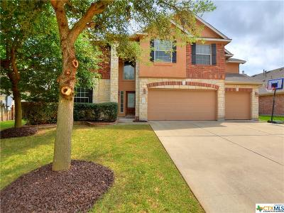 Round Rock Single Family Home For Sale: 2713 Plantation