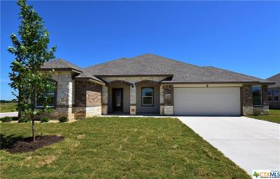 Killeen Single Family Home For Sale: 6119 Verde Drive