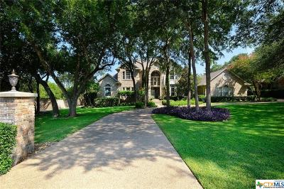 Round Rock Single Family Home For Sale: 3300 Vintage Drive