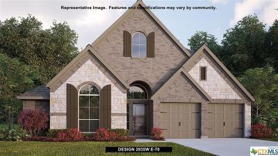 New Braunfels Single Family Home For Sale: 1176 Hammock Glen