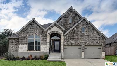 San Antonio Single Family Home For Sale: 14023 Rosetta