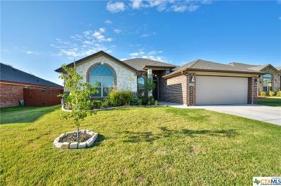 Belton Single Family Home For Sale: 2205 Yturria