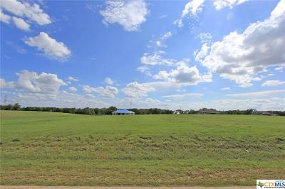 Belton Residential Lots & Land For Sale: 6074 Miller