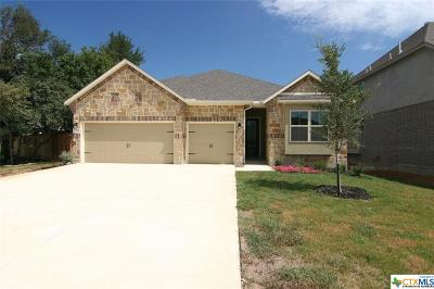 New Braunfels Single Family Home For Sale: 1380 Settlement Way