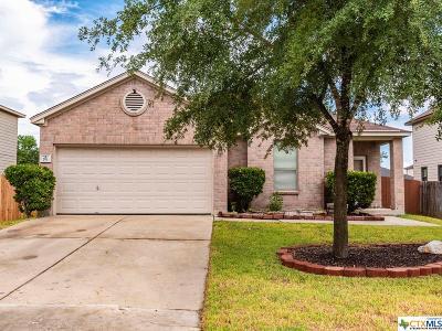 Kyle Single Family Home For Sale: 791 New Bridge
