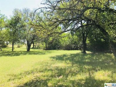 Killeen Residential Lots & Land For Sale: E Trimmier Lot 1 With Pond