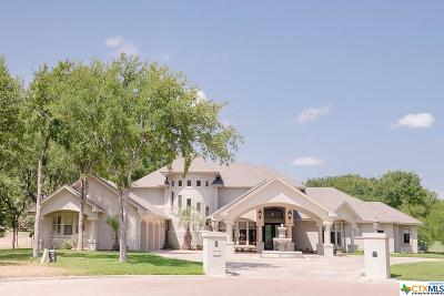 Salado Single Family Home For Sale: 1317 Jack Nicklaus Circle
