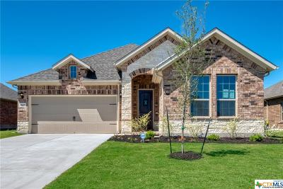 Schertz Single Family Home For Sale: 5017 Arrow Ridge