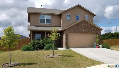 Kyle Single Family Home For Sale: 553 Alpha