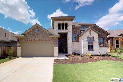 Williamson County Single Family Home For Sale: 2904 Rabbit Creek