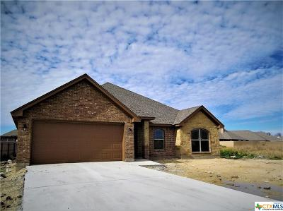 Belton, Temple Single Family Home For Sale: 2726 Paisley