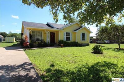 Burnet County Single Family Home For Sale: 555 Live Oak Drive