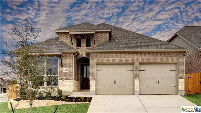 San Antonio Single Family Home For Sale: 12723 Hellas Ranch