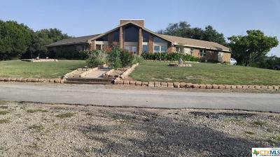 Lampasas County Single Family Home For Sale: 13910 E Us Hwy 190