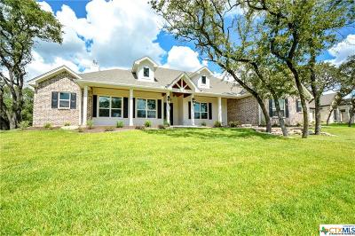 Belton Single Family Home For Sale: 22 Riverstone Parkway