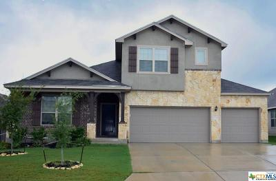 New Braunfels Single Family Home For Sale: 733 Gray Cloud