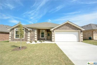 Belton Single Family Home For Sale: 609 Damascus