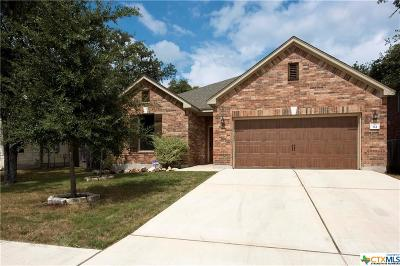 San Marcos Single Family Home For Sale: 314 Autumn Willow
