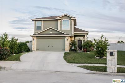 New Braunfels Single Family Home For Sale: 989 Lauren Street