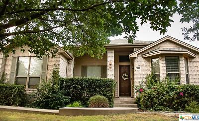 Hays County Single Family Home For Sale: 100 Quarry Crest