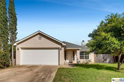 San Antonio Single Family Home For Sale: 3514 Lake Towne Court