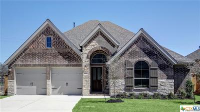 Boerne Single Family Home For Sale: 28926 Pomegranate