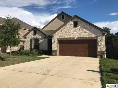 San Marcos Single Family Home For Sale: 307 Hunter Hill Drive