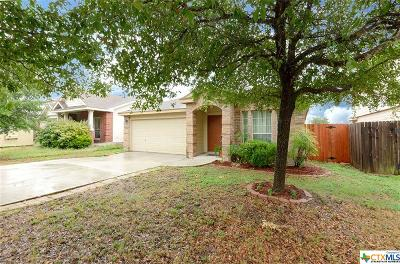 New Braunfels Single Family Home For Sale: 259 Goliad