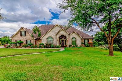 Salado Single Family Home For Sale: 1204 Windy Hill Road