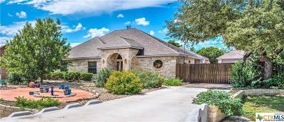 Cedar Park TX Single Family Home For Sale: $384,900