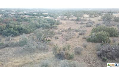 Killeen Residential Lots & Land For Sale: 10.15 Acre Track 3 Savannah Drive