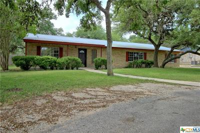 Hays County Single Family Home For Sale: 309 Suttles