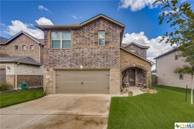 Cibolo Single Family Home For Sale: 252 Heavenly