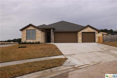 Copperas Cove Single Family Home For Sale: 1106 Liberty Lane