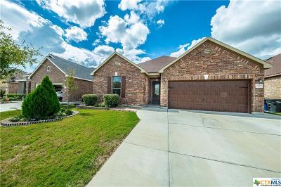 New Braunfels Single Family Home For Sale: 2079 Stepping Stone