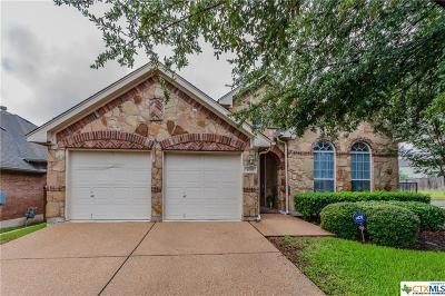 Round Rock Single Family Home For Sale: 4199 Fairmeadow