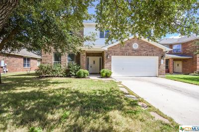 Williamson County Single Family Home For Sale: 2112 Fall Creek