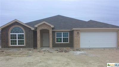 Killeen Single Family Home For Sale: 6808 Keechi Valley Drive