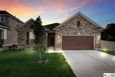 San Marcos Single Family Home For Sale: 206 Hunters Hill Drive