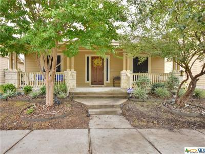 Round Rock Single Family Home For Sale: 755 Gabriel Mills Drive