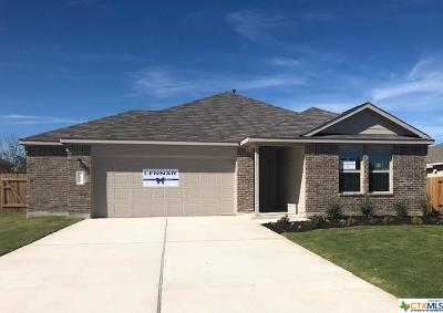 Kyle TX Single Family Home For Sale: $230,000