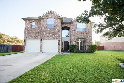 Hays County Single Family Home For Sale: 653 Hometown Parkway