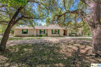 Burnet County Single Family Home For Sale: 175 Wagon Trail