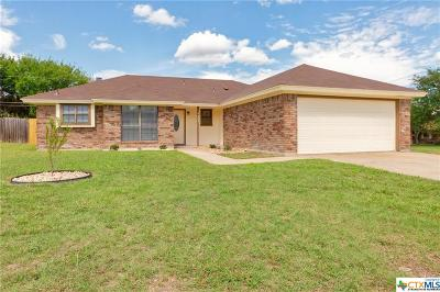 Killeen Single Family Home For Sale: 1607 Sagebrush Drive