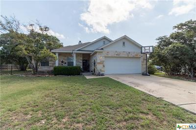 Liberty Hill TX Single Family Home For Sale: $244,900