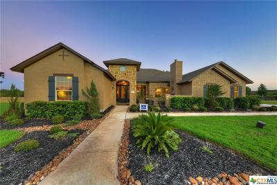 New Braunfels Single Family Home For Sale: 26226 Park Bend