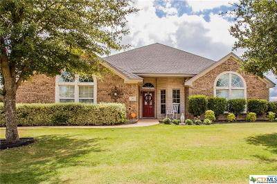 Salado Single Family Home For Sale: 282 Hamer Drive