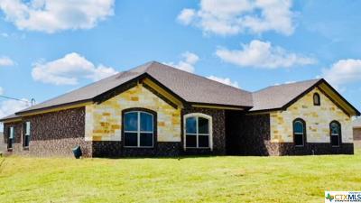 Kempner Single Family Home For Sale: 274 Cr 4709